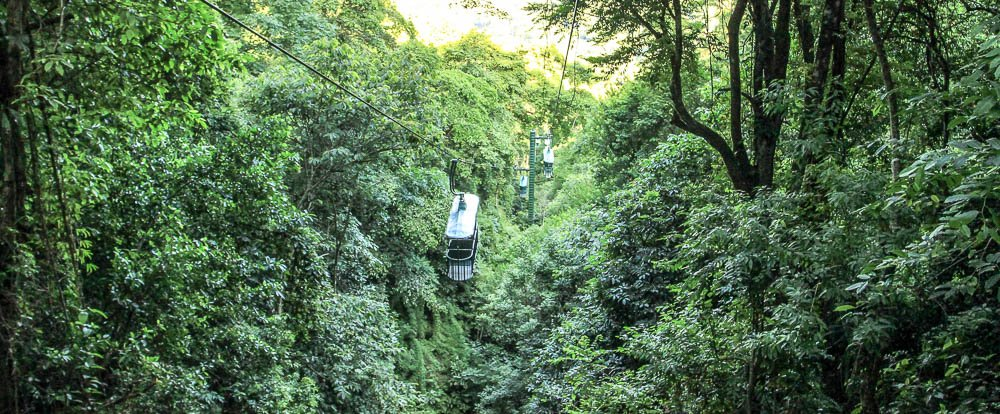 rainforest adventures aerial tram top 