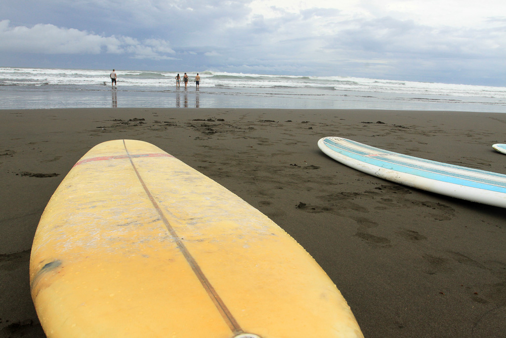lagarto surf company in the surf 