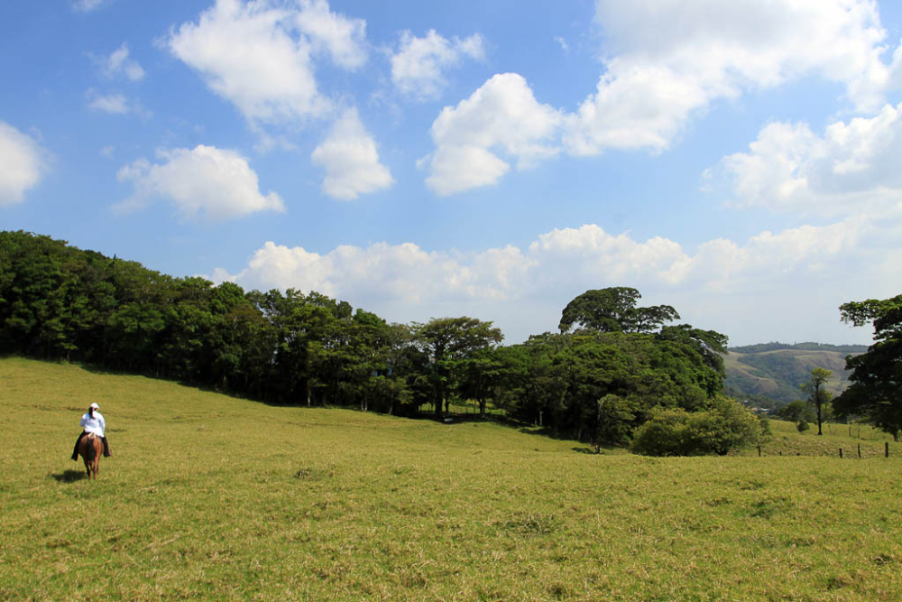 Life in the Monteverde Countryside