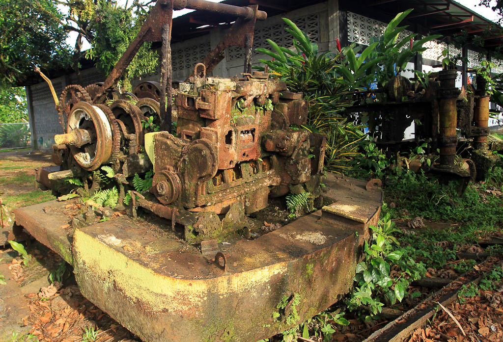 how conservation saved tortuguero blog sawmill machine 