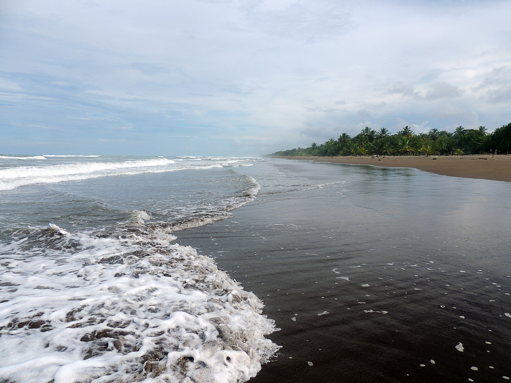 how conservation saved tortuguero blog beach 