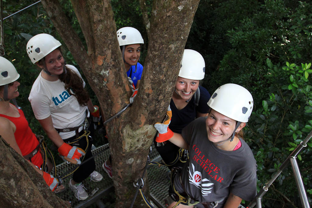 original canopy tour group platform 