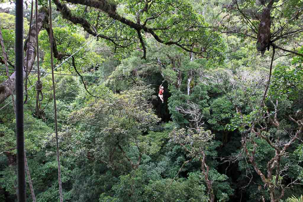 original canopy tour on cable 