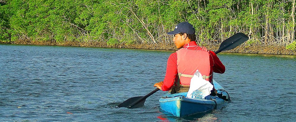 kayaking tamarindo estuary