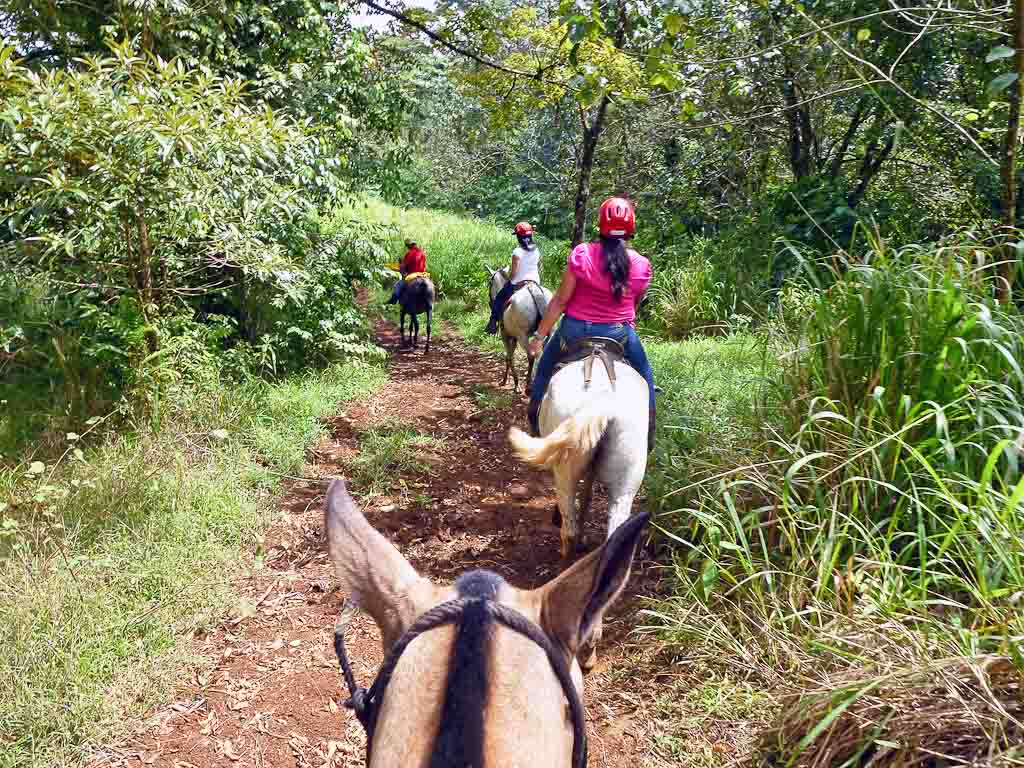 pozo azul horseback riding