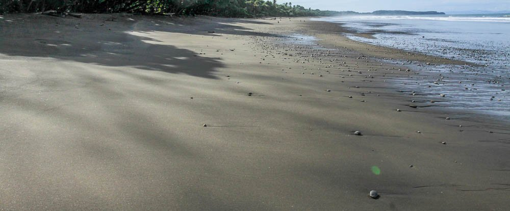 hermosa beach attraction dominical coast 