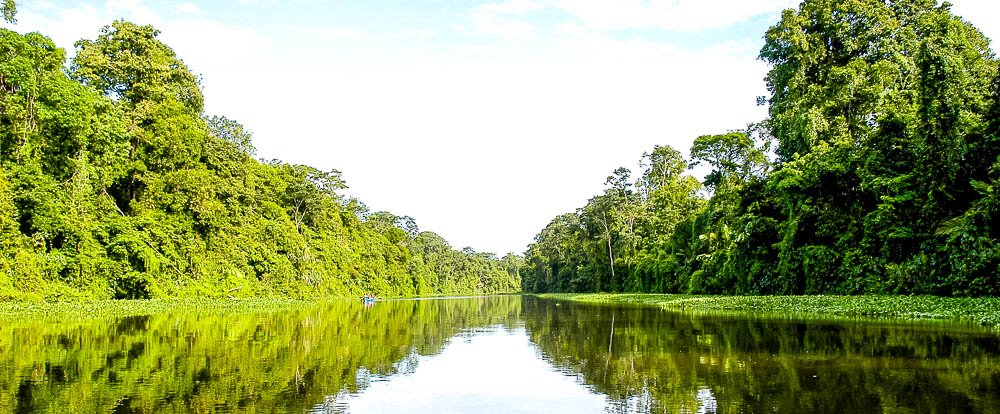 Paddle Through Majestic<br>Canals in Tortuguero