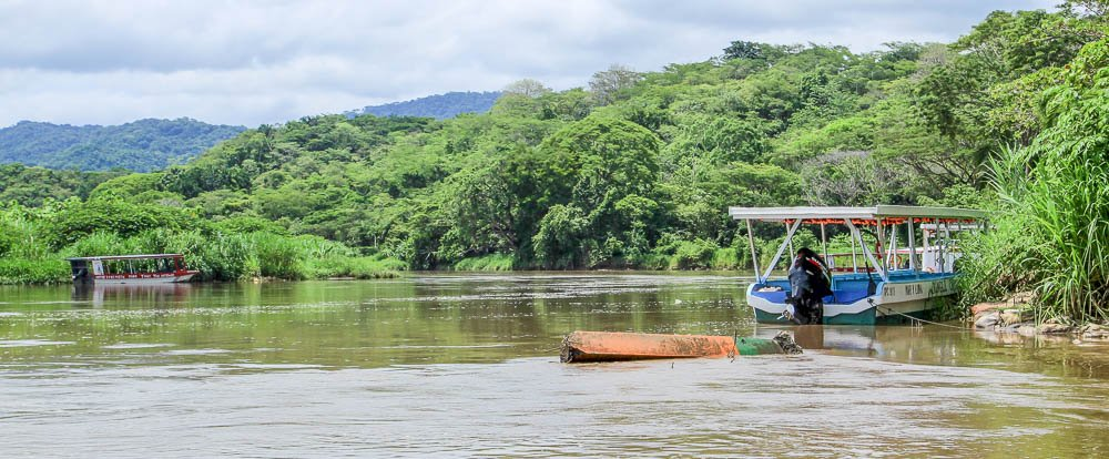 tarcoles river overview   - Costa Rica