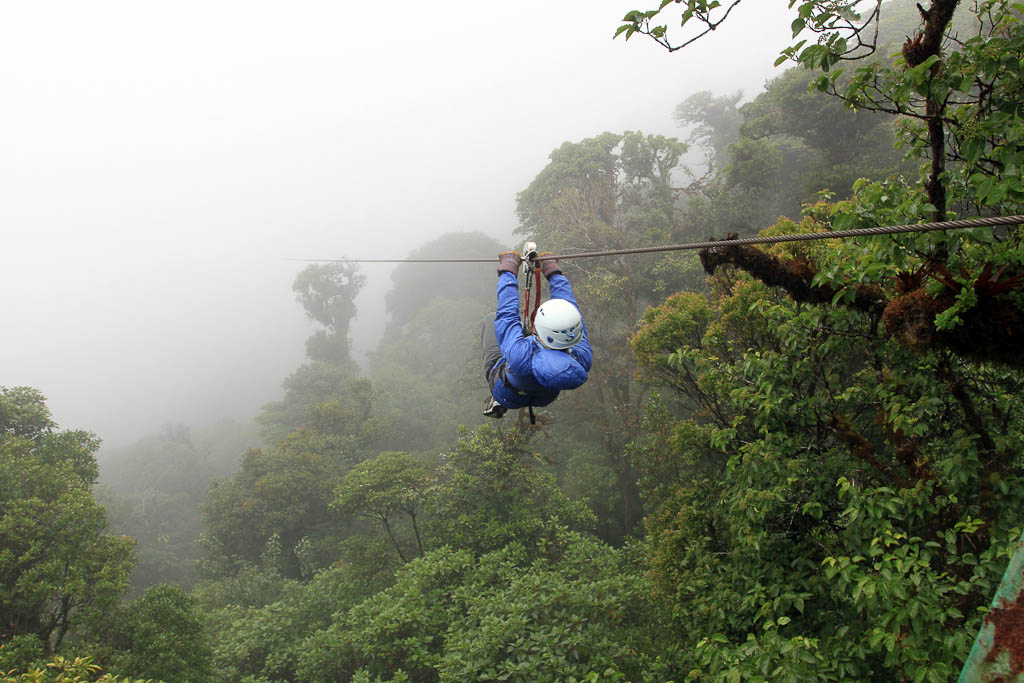 skytrek through the forest 