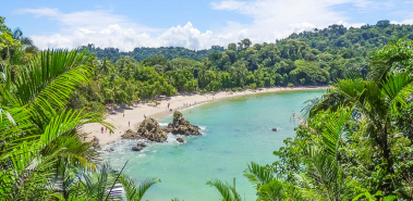 Pacific Beaches & Rainforest Region - Costa Rica