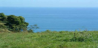 Property with Space for Three Different Building Lots - Costa Rica