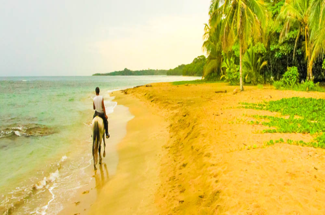 terraventuras beach horseback ride cocles 