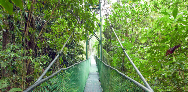 Tirimbina Rainforest Center and Wildlife Refuge - Costa Rica