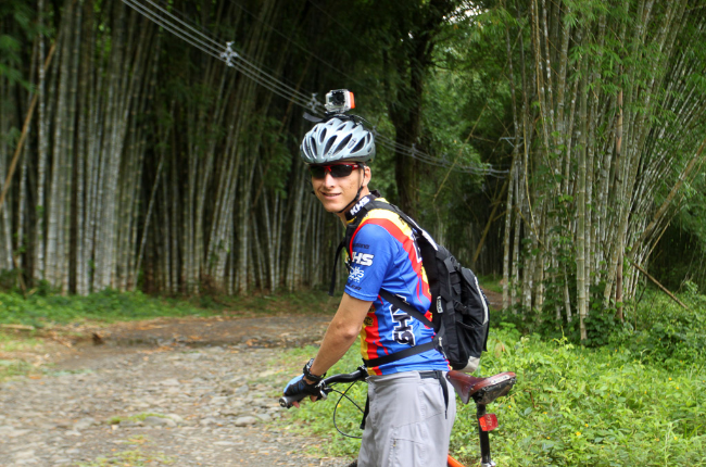 bamboo forest moutain bike tour forest 