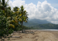 Palm-lined Beach at Ballena National Marine Park