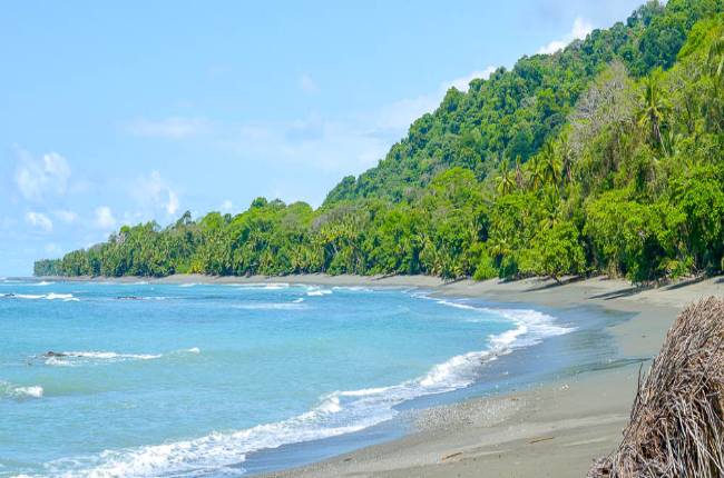hike from sirena to la leona ranger station corcovado national park beach