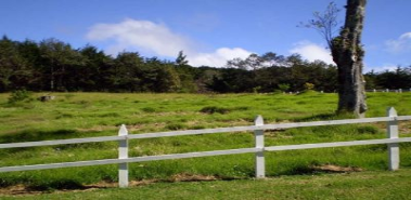 Picket Fence Lots - Costa Rica