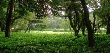 Residential Land in San Rafael de Heredia - Costa Rica