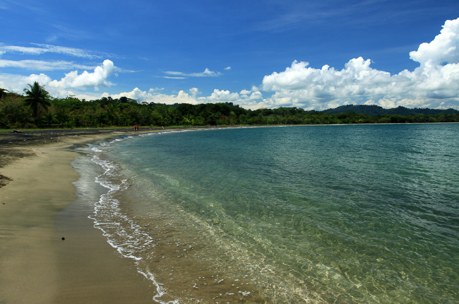 turrialba black singles Finding just the right costa rica beach for your getaway will be easy browse our info to find the best beach in costa rica on either the pacific or caribbean coast.