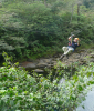 Canopy Tour in Braulio Carrillo National Park