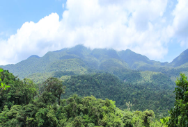 Tenorio Volcano National Park