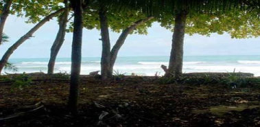 Beachfront Lot with a Cabin - Costa Rica
