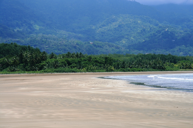White Sand Beach of Playa Uvita