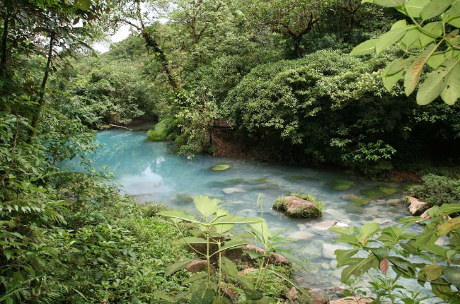 Costa Rica Blue Water River Above The Rio Celeste Waterfall