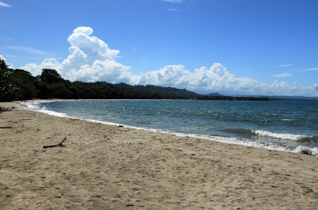 cahuita national park attraction page white beach 