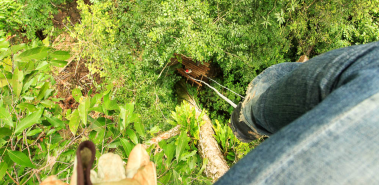 Flight of the Toucan Canopy and Tree Climb Combo - Costa Rica